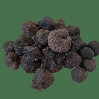 schwarze Trüffel aus Istrien
